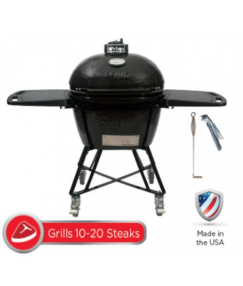 Primo Oval Large 300 All-in-One Grill
